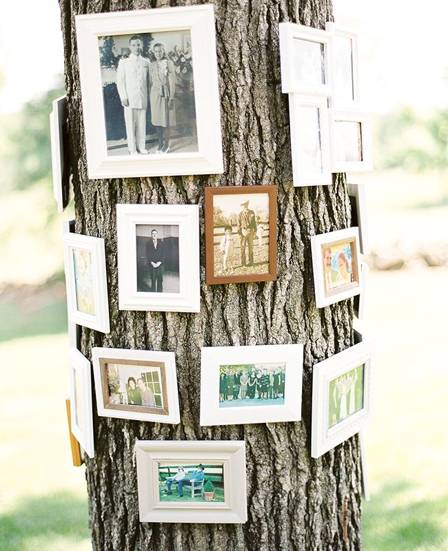A family tree for the wedding   Sweet Tea Photography   blog.theknot.com