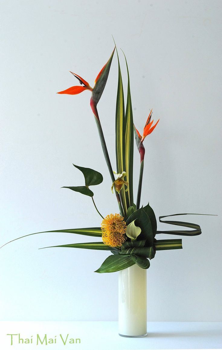ikebana with bird of paradise