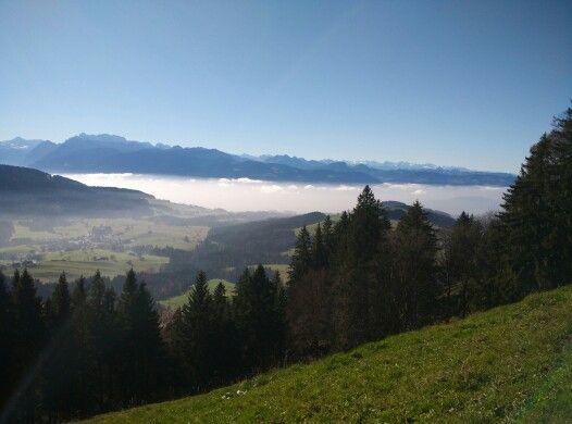 Blick Richtung Zürich