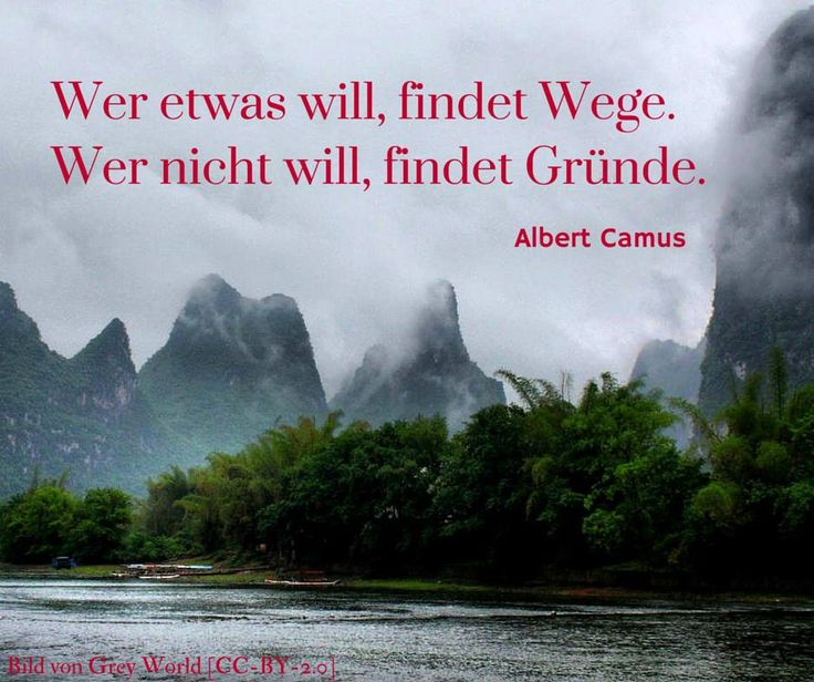 Wer etwas will, findet Wege. Wer nicht will, findet Gründe. - Albert Camus