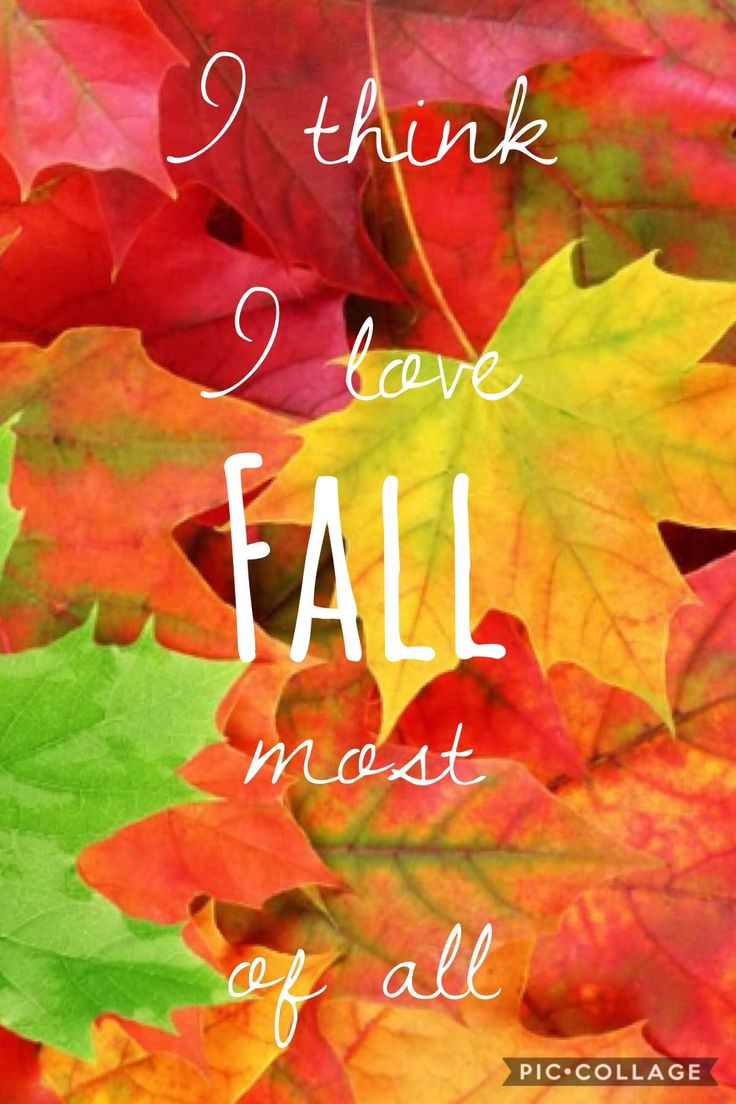 Pin by annieesterline on {fall} Poster, Fall, Holiday