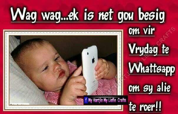 Whatsapp net gou vir Vrydag