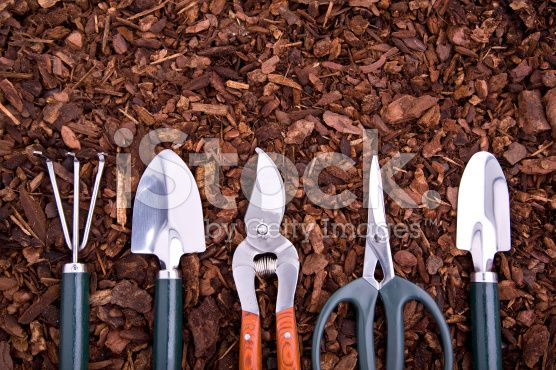 Gardening(XL) royalty-free stock photo