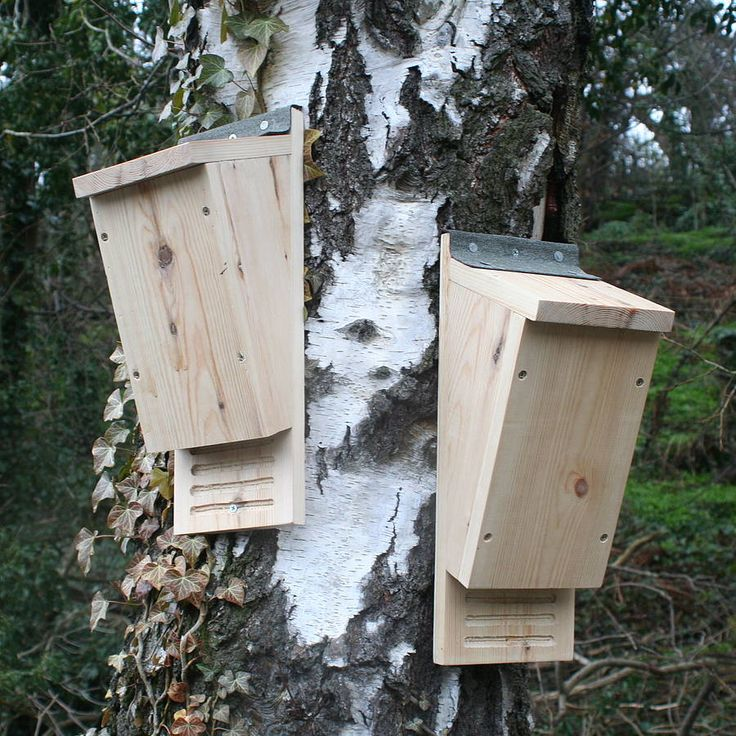 Bat boxes... Another way you can do your bit for nature. #homesfornature.