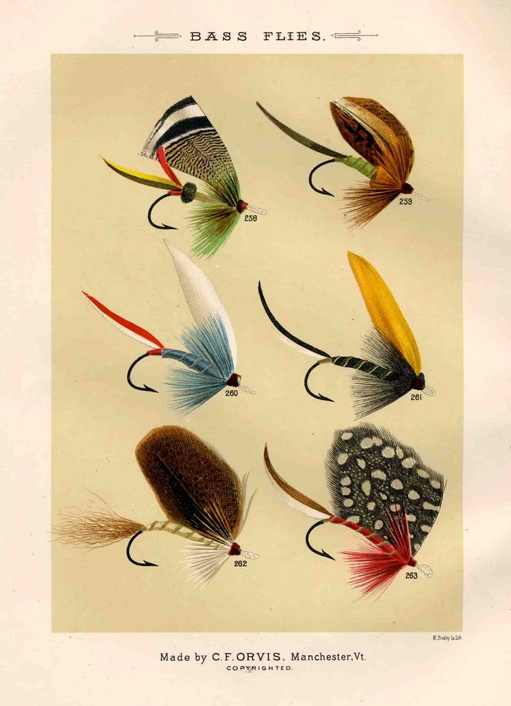 79 best fly tying images on pinterest fly fishing flies for Fly fishing lures for bass