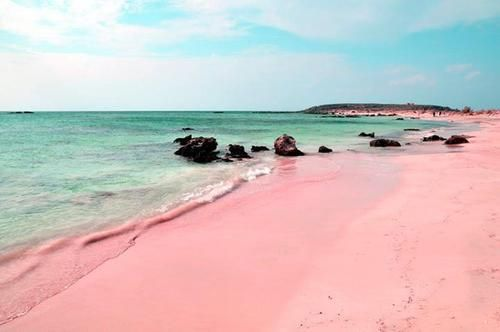 Pink sand on Ellafonisi Beach, Crete, Greece. Pink sand is formed of tiny red organisms that grow on dead coral reefs and pieces of shells which fall to the ocean floor and are washed onto shore. Photo credit: Jan-Erik Larsson