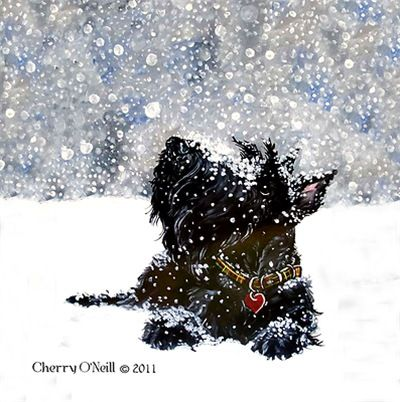 Scottish Terrier in Snow