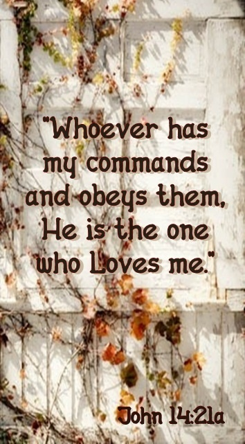 """He that hath my commandments, and keepeth them, he it is that loveth me: and he that loveth me shall be loved of my Father, and I will love him, and will manifest myself to him."""