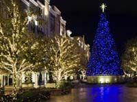Commercial Christmas Light Installation.