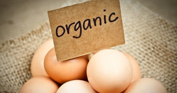 Will Switching to Organic Meat, Dairy and Eggs Save Your Health? by Susan Levin, M.S., R.D.