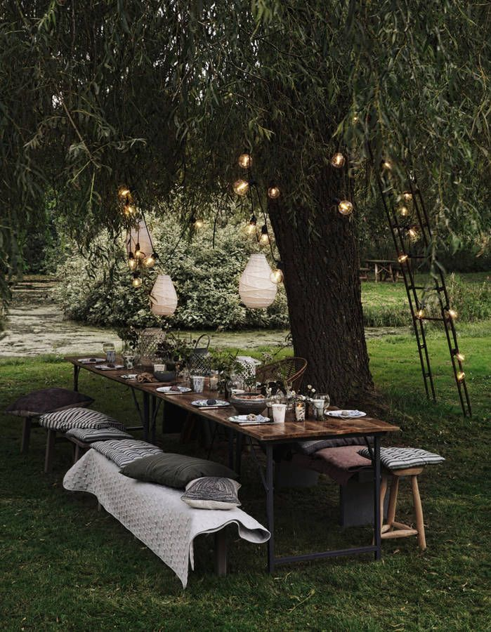 Installez une grande table à manger (sous un arbre XXL) dans le jardin