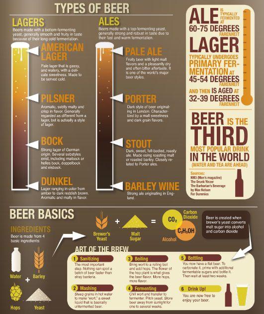 Types of Beer www.avacationrental4me.com