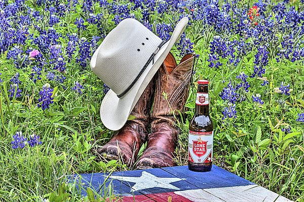 235 Best Texas Images On Pinterest Texas Pride Paisajes