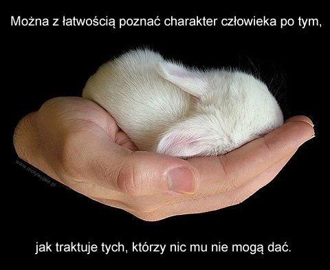 Można… | MOTYWUJSIE.PL