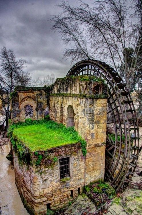 Abandoned Waterwheel in Cordoba, Spain.