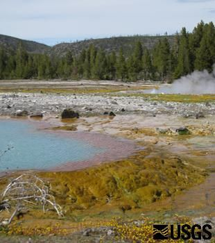 Yellowstone Volcano Observatory.  This Web site provides up-to-date information on the volcanic and seismic activity in the region as well as historical data.