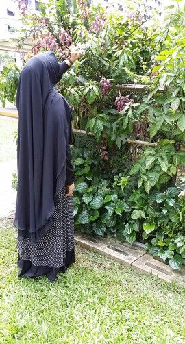 Long chiffon flowy Khimar. Available in peach and light green. Text me for price. Lovely must have!
