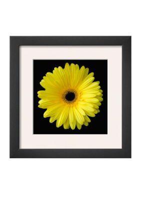 Art.com  Gerbera Daisy Yellow Framed Art Print - Online Onlybr