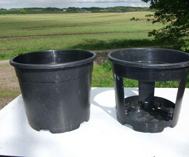 Growing Potatoes in Buckets