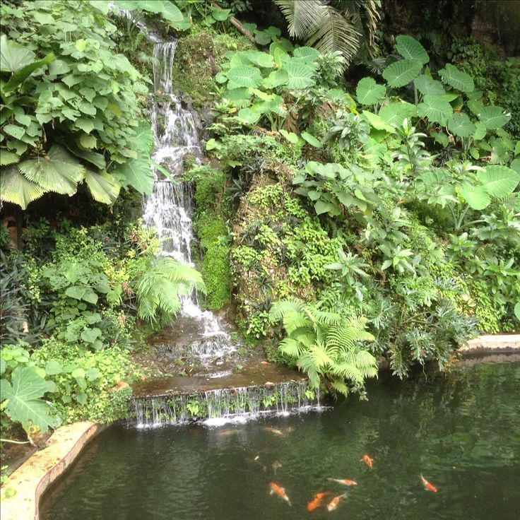 Fountains near the temple