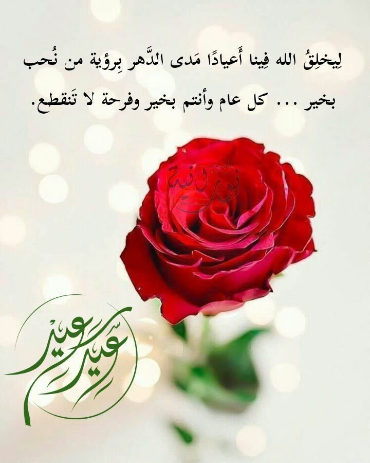 Pin By Hope In Allah On تهنئة Flowers Plants Vegetables
