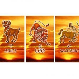 Quali sono le caratteristiche dei segni di fuoco? Ariete: determinato. Leone: carismatico. Sagittario: avventuriero.