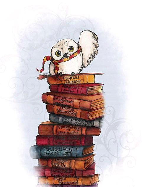 Imagen de harry potter, book, hedwig, gryffindor, hogwarts and owl