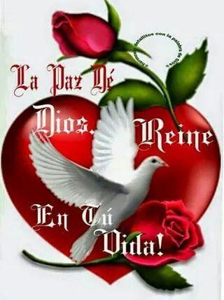 La paz de dios reine en tu corazon