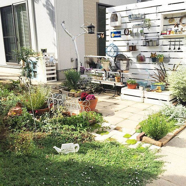 女性で、4LDKの我が家の庭/マイガーデン/グランドカバー/ヒメイワダレソウ/ガーデニング/ガーデン…などについてのインテリア実例を紹介。「今日の庭~(*^^*) まだまだ日中の陽射しは暑いですが湿度はやわらいできました。 秋はもうすぐそこまで来てるかな?(*´ェ`*)  お花が少なくなってきて緑率が高くなってきた我が家の庭。 乱れてきたグランドカバーのヒメイワダレソウ、整えなきゃな…。」(この写真は 2016-09-10 22:10:29 に共有されました)