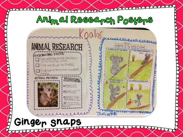 Essay on Animals