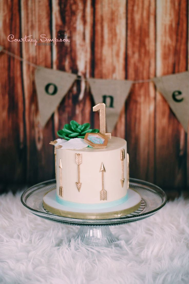 Teagan S Perfect Succulent Smash Cake Boho Bohemian