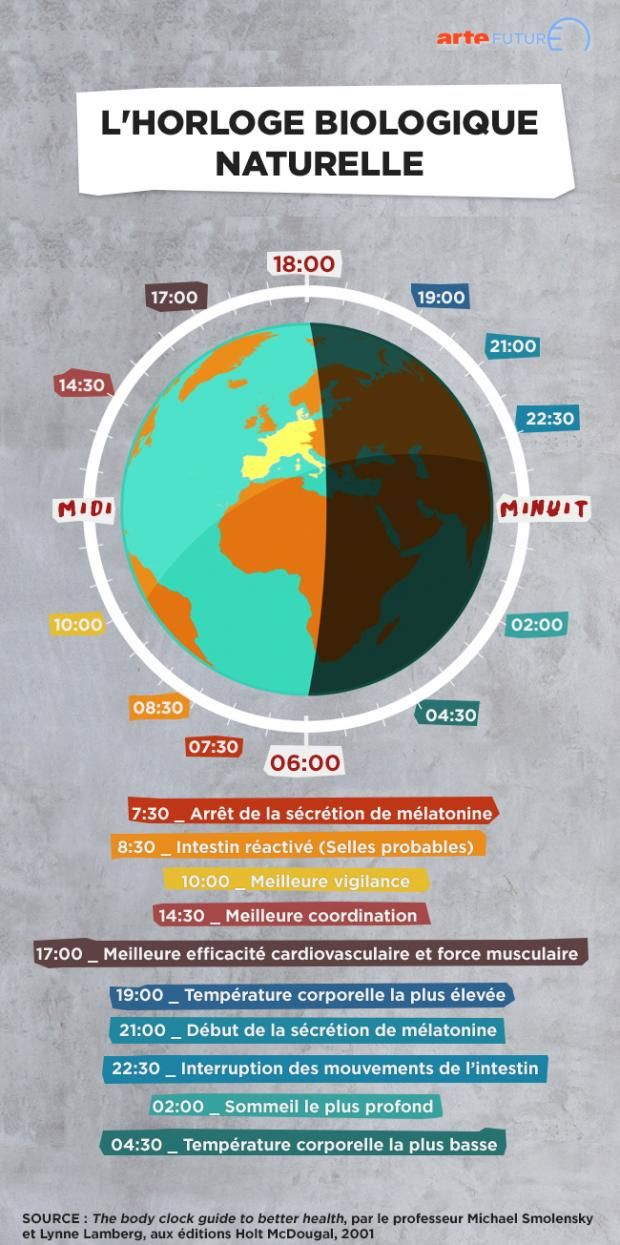 L'horloge biologique naturelle