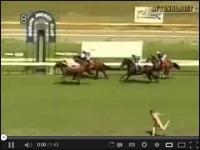 Stare ale jare, filmik o tym jak ktoś chciał zaistnieć w telewizjach na całym świecie i wyskoczył na tor podczas wyścigów konnych...