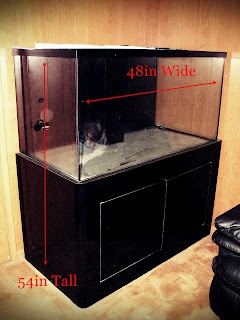 complete saltwater aquarium tank for sale and such a deal