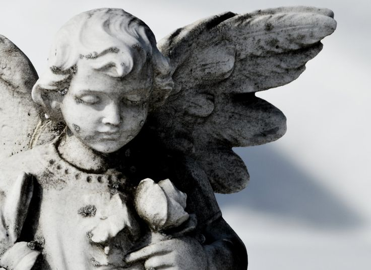 Sweet Praying Angel; Angel Statue with Bloom of Moss; Victorian Angel Statue;  Fine Art Photography; Custom Orders Available by MissmacMemories on Etsy