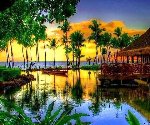 now that is a tropical paradise | Beautiful Places | Pinterest