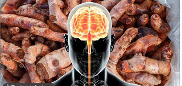 Há seis especiarias fantásticas que nos ajudam a acabar com inflamações e a melhorar a saúde do cérebro, além de darem um sabor especial aos nossos alimentos.O orégano, por exemplo, é um ótimo aliado contra as bactérias.