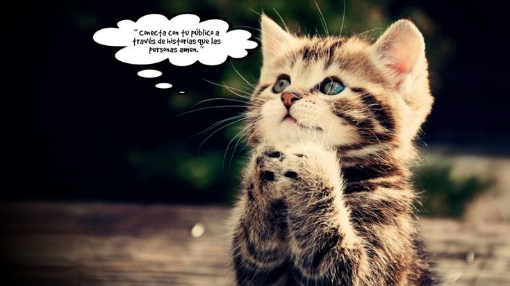 Have a look at this speech bubble photo and share it with your friends.