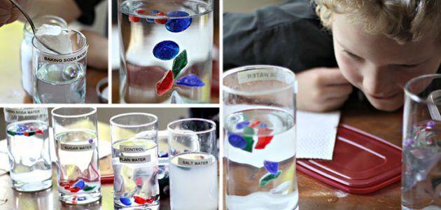 experimento_cientifico_con_agua_para_hacer_con_ninos_densidad_agua_salada