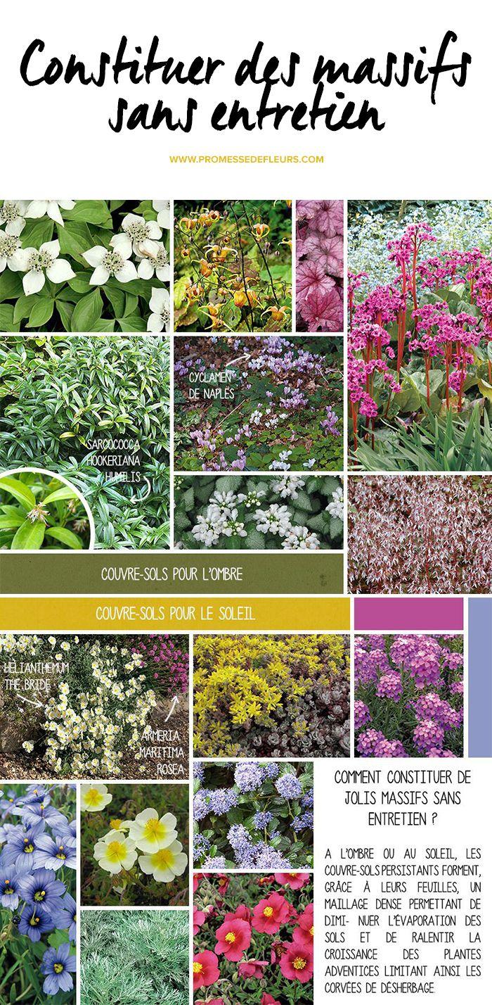 Les 25 meilleures id es concernant parterres de fleurs sur for Petit jardin sans entretien