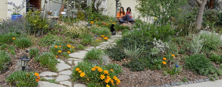 Backyard Landscaping Elk Grove Ca : Best images about water wise front yard on sacramento