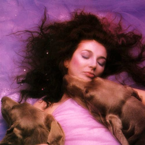 Kate Bush, hounds of love are hunting..... It's in the trees!It's coming!!