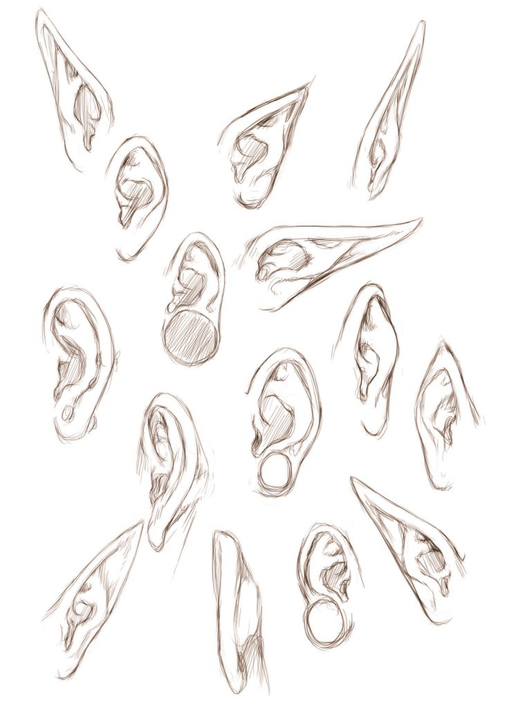 +EARS+ by =jinx-star on deviantART https://www.facebook.com/CharacterDesignReferences