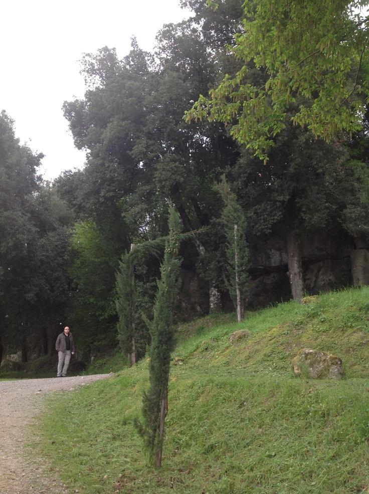 Prima di entrare nel castello, proviamo ad esplorare l'ingresso posteriore; e ci facciamo una bella passeggiata nel verde lungo le mura.