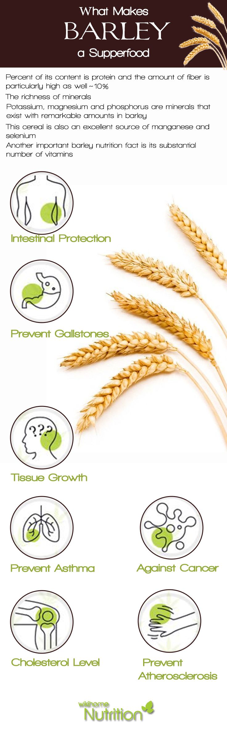 Barley: Nutrition Facts and #HealthBenefits: What makes #barley a #supperfood