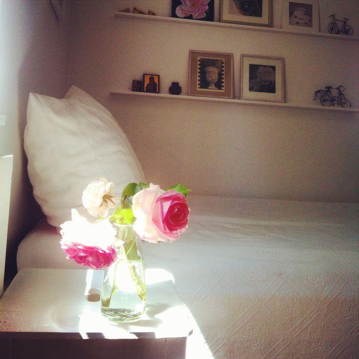 Rose & Sunray