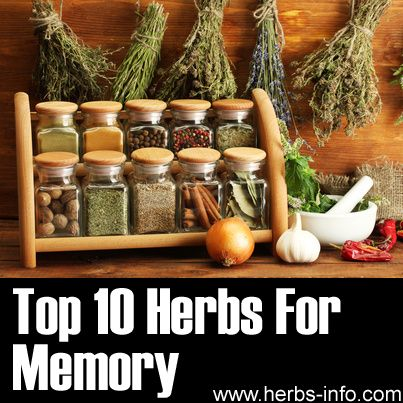 ❤ Top 10 Herbs For Memory ❤