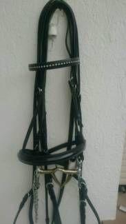 Kandare USG inkl. Gebisse in Nordrhein-Westfalen - Solingen | Pferdesättel gebraucht günstig kaufen | eBay Kleinanzeigen