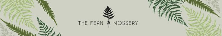 The Fern and Mossery - helpful info on moss terrariums