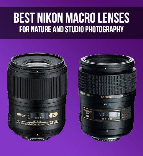 Best Nikon Lenses for Macro Photography | Smashing Camera
